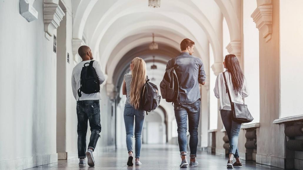 acceso universidades
